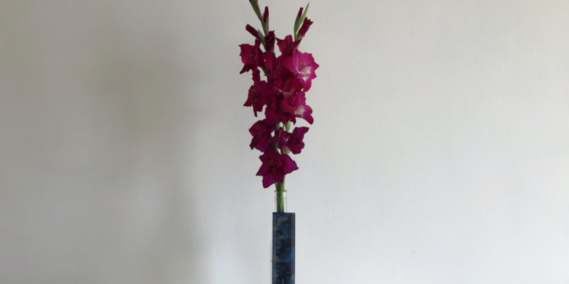 2 Blooms from my favourite flower - Gladiolus EVS18