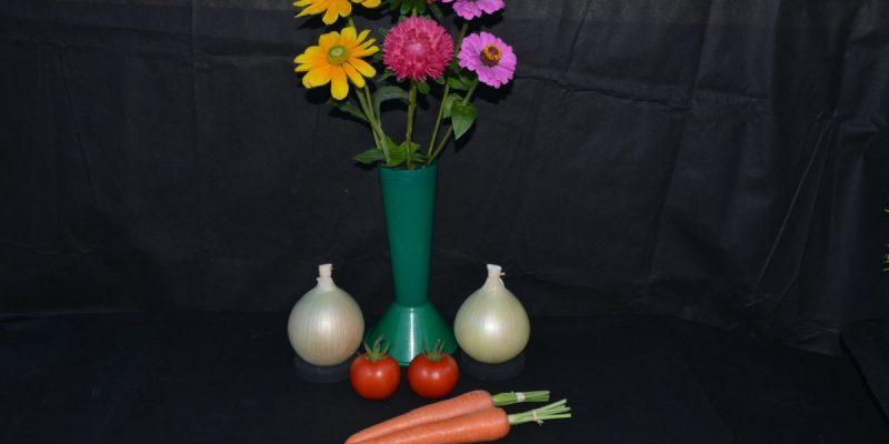 3 Vegetables & 3Flowers EVS-05 1